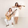 Violin Connection
