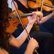 stijkers viool trouwceremonie boeken