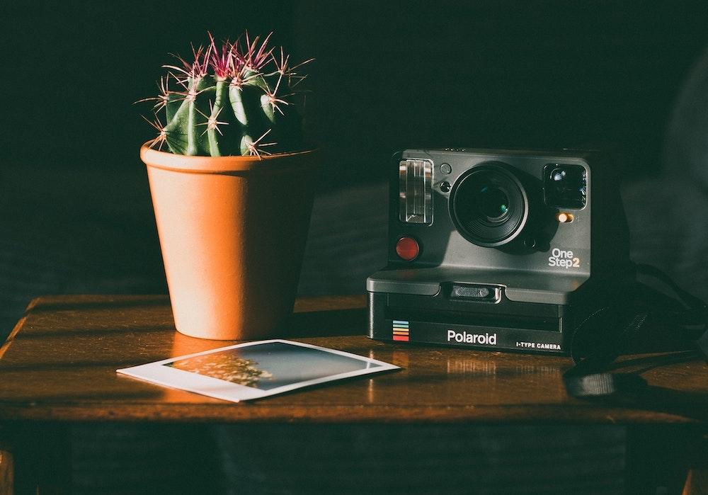 Polaroid-fotografie buchen