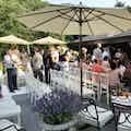 Bruiloftsfeest Marcha.jpg