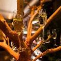 Evenses champagneboom.jpeg