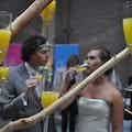 Boek champagneboom
