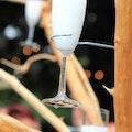 Champagneboom Evenses