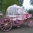 Roze koets bruiloft