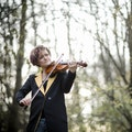 Violin i skov.jpg