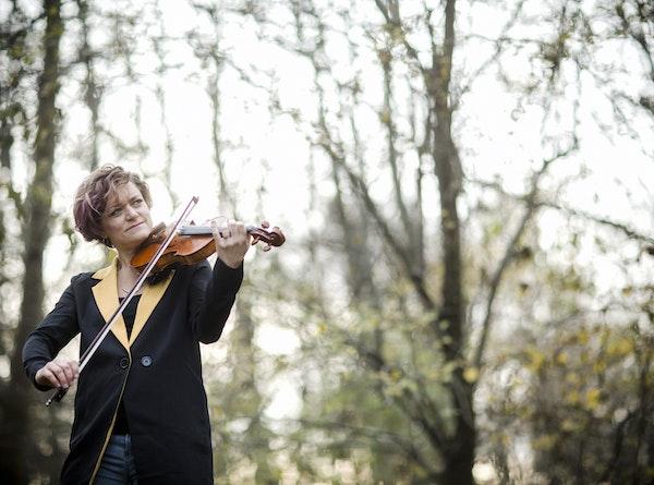 Violin i skov