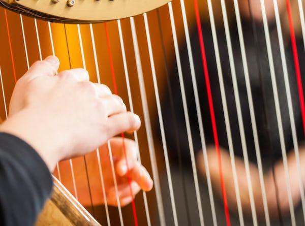 harpist close