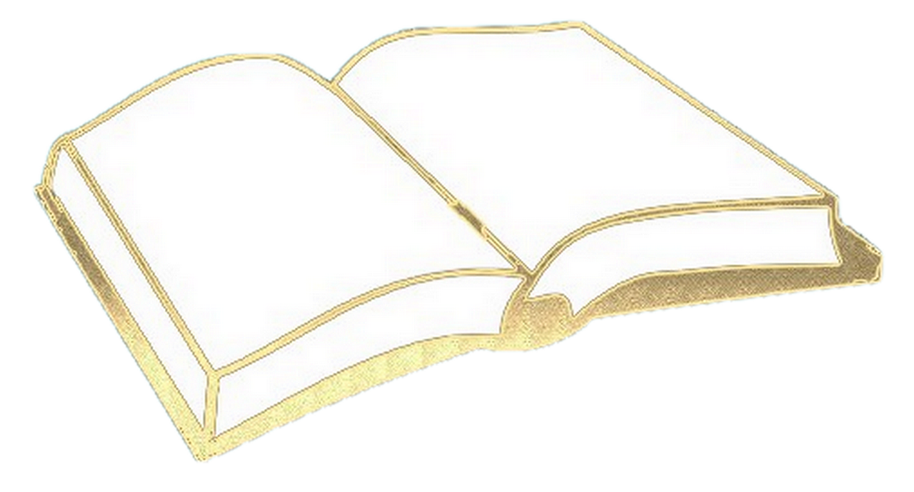 livre d'or mariage original, livre d'or original.png
