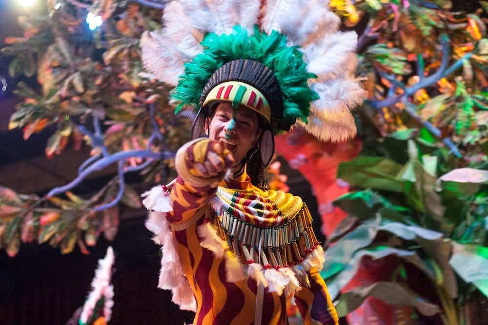 Carnaval boeken 1.jpg
