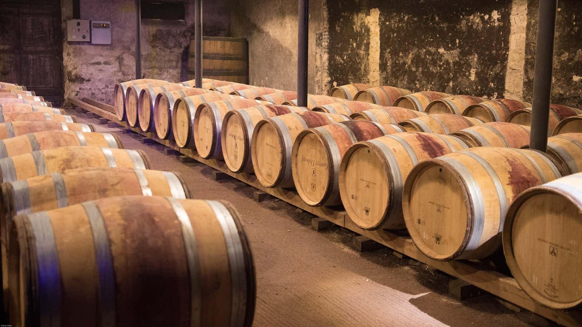 vins beaujolais, le beaujolais nouveau