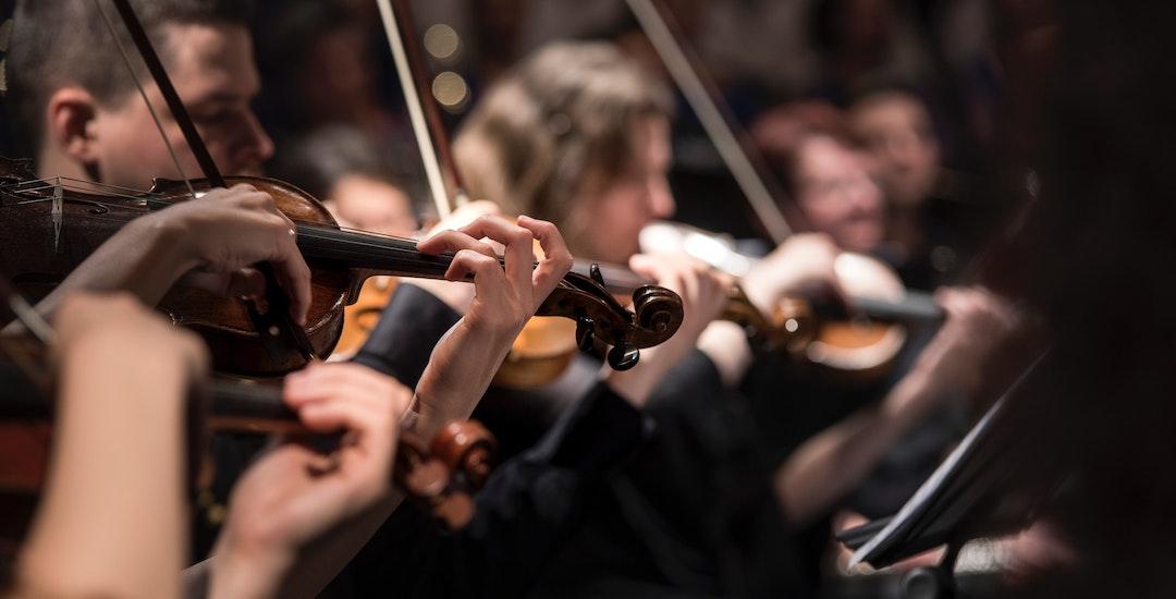 Violist huren, violist, violist boeken, boeken violist, violist boeken.jpg