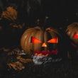 Halloween feest organiseren