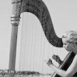 Harpiste boeken verjaardag
