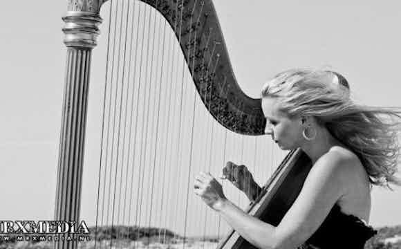 Harpiste boeken verjaardag.jpg