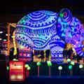 Jungle thema feest ()