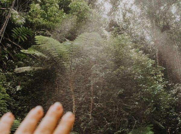 Jungle thema vibe