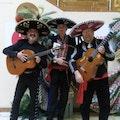 Mariachi Band inhuren personeelsfeest.jpg