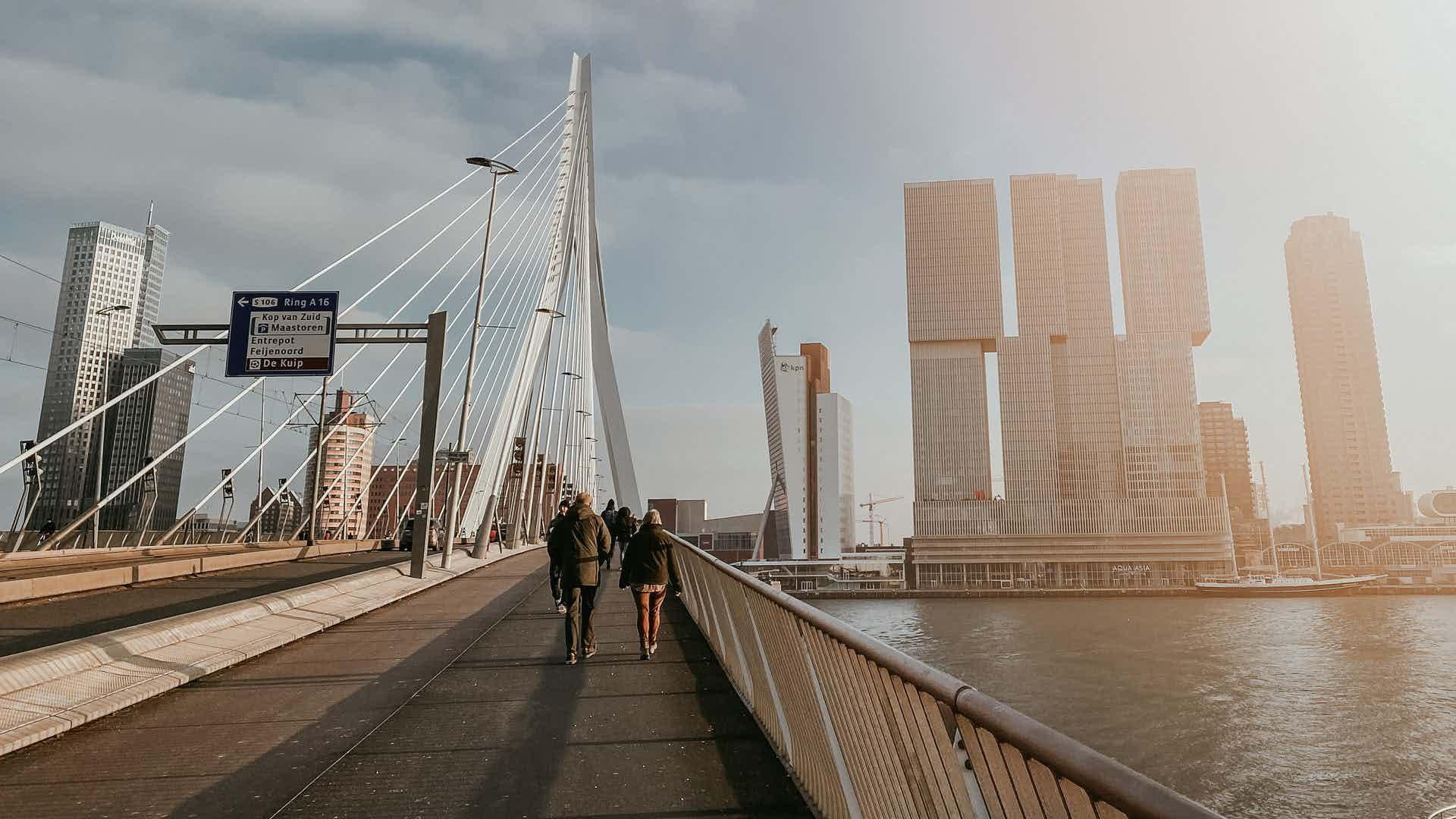 Rotterdam coverband boeken