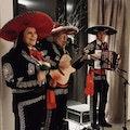 Mariachi band huren festival.jpg