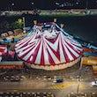 circus feest, feest circus
