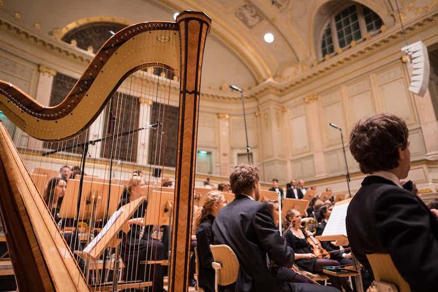 harpist inhuren evenement verjaardag bruiloft_0