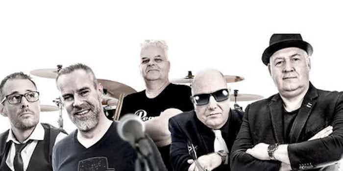 rock coverband amsterdam copy