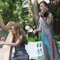 violiste en harpiste duo huren.jpg