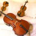 klassieke muziek bruiloft