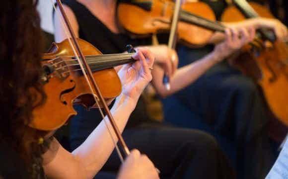 stijkers-viool-trouwceremonie-boeken.jpg