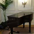 grand piano player