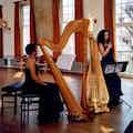 harpiste-helena-boeken.jpg